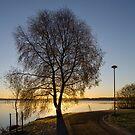 Morning in Jyväskylä by Henry Moilanen