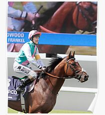 Frankel On Stage and Screen  Poster