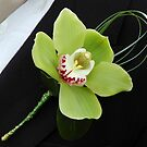 Green Orchid by James Stevens
