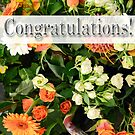 Congratulations! 1 by James Stevens