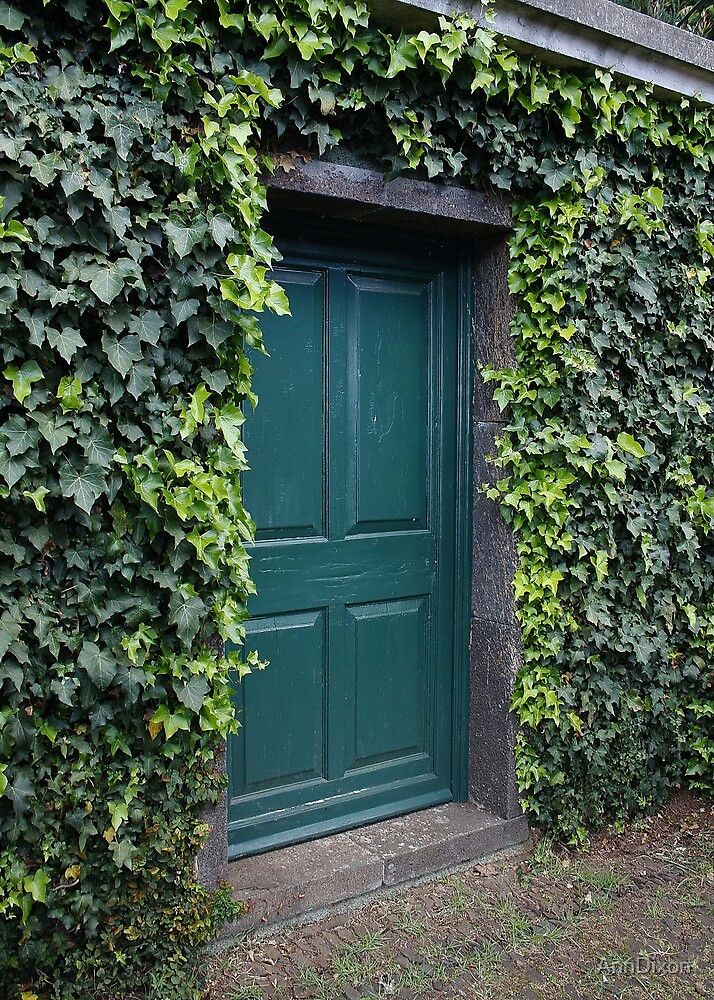 Green Door by AnnDixon