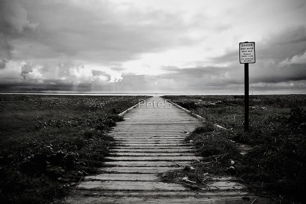 The Jetty   by Peter Stone