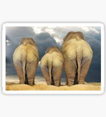 Traveling Elephant Family  Sticker