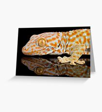 Reflections of a tokay gecko Greeting Card