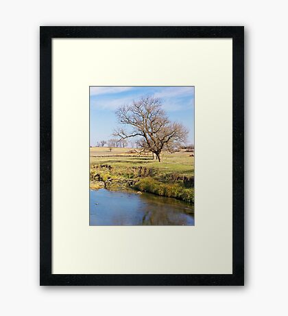 Forgotten Homestead Framed Print