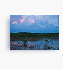 Swamp Reflect Canvas Print