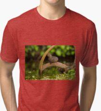 Inquisative baby Water vole Tri-blend T-Shirt