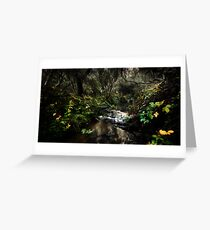 Fairy Dell Greeting Card