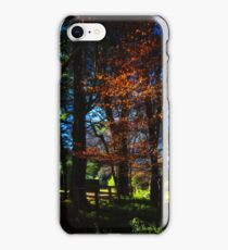Copper beeches iPhone Case/Skin
