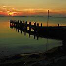 Jetty Whitemark Flinders Island by Andrew  Makowiecki