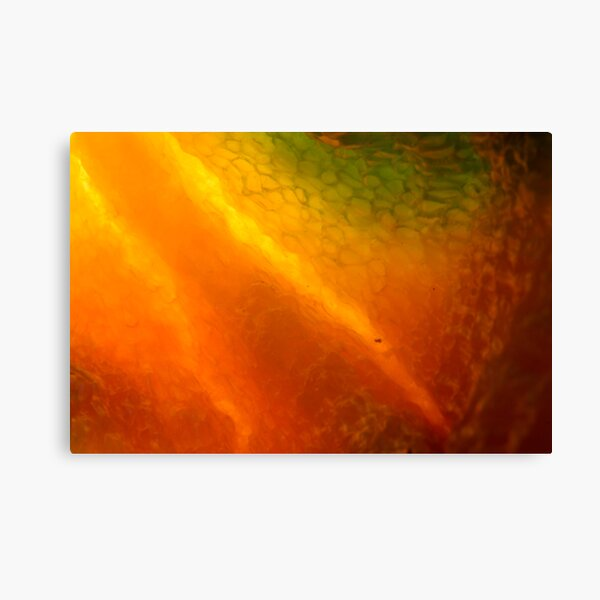 burning inside Canvas Print