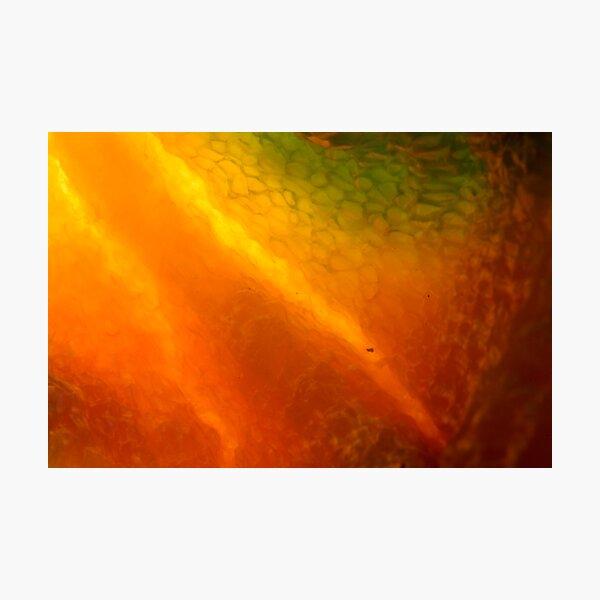 burning inside Photographic Print
