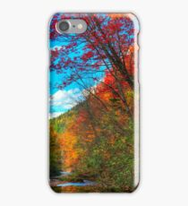 HDR Autumn Tilted Tree iPhone Case/Skin