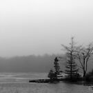 Lake Mists by Mark Theriault