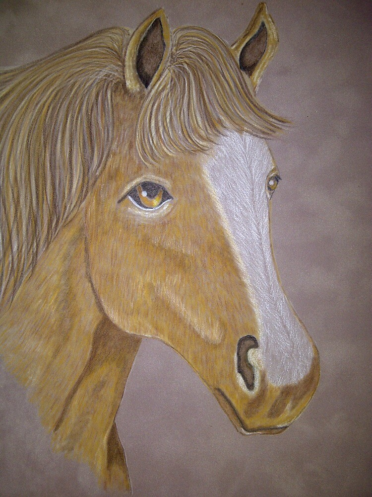 Horse by Riana222