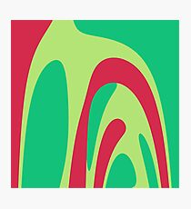 Nouveau Retro Graphic Red and Green Photographic Print