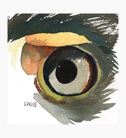Eagle's Eye Photographic Print