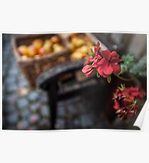 Autumn Apples and Blossoms Poster