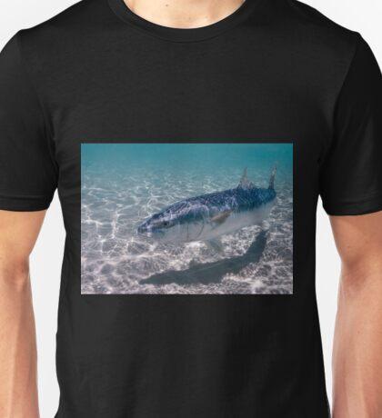 Kingfish at Ned's Beach, Lord Howe Island T-Shirt