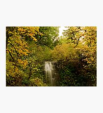 Autumn At Upper Terrace Photographic Print