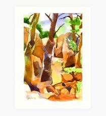 Pathway at Elephant Rocks Art Print