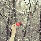 Paper Cranes and Forests of Ice by Allison Imagining