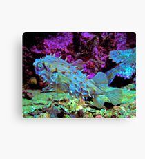 CAMO COLOR OF THE PUFFER! Canvas Print
