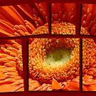 Hot Stuff by Janys Hyde