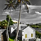 A Old Bermuda Home by buddybetsy