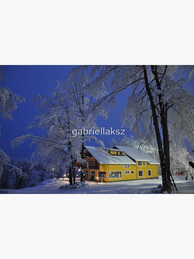 Winter wonderland by gabriellaksz