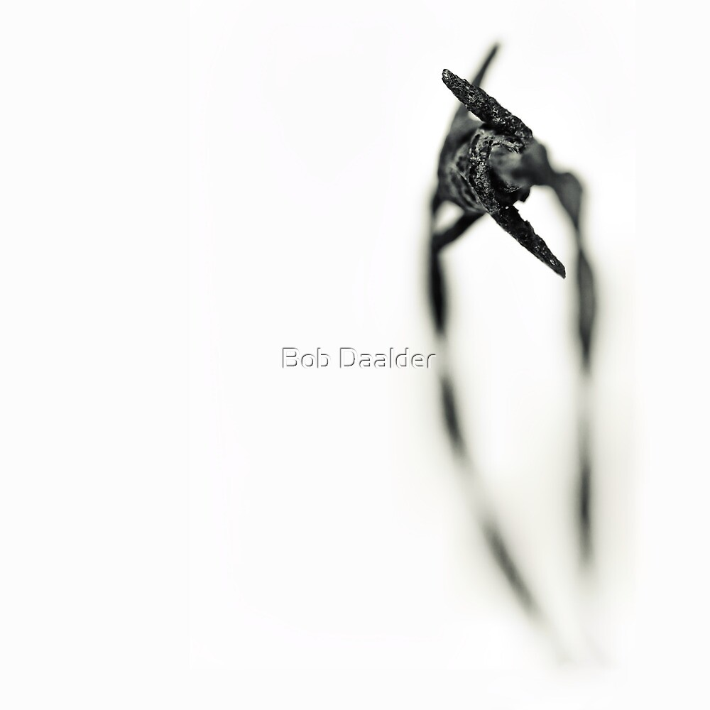 Beautiful Pain...II by Bob Daalder