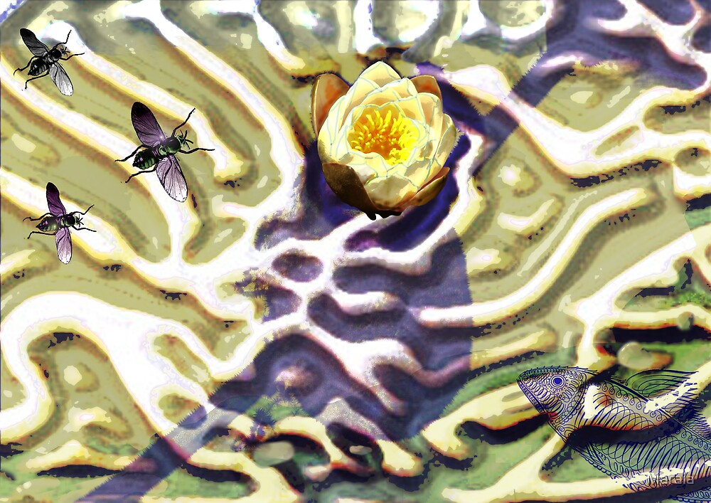 Lotus Conscience Emerging (or out of the cocoon) by Maraia
