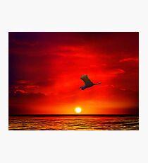 Sunset 11 Photographic Print
