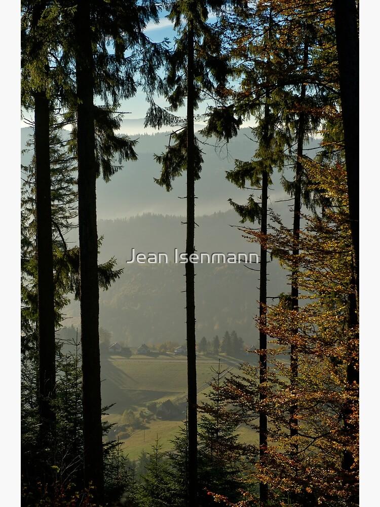 «Forêt d'épicéa sur les pentes du Climont» par Isenmann