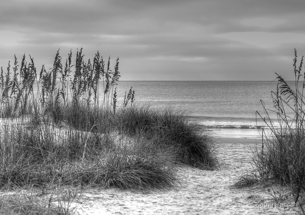 Serenity Beach In Black And White by Kathy Baccari