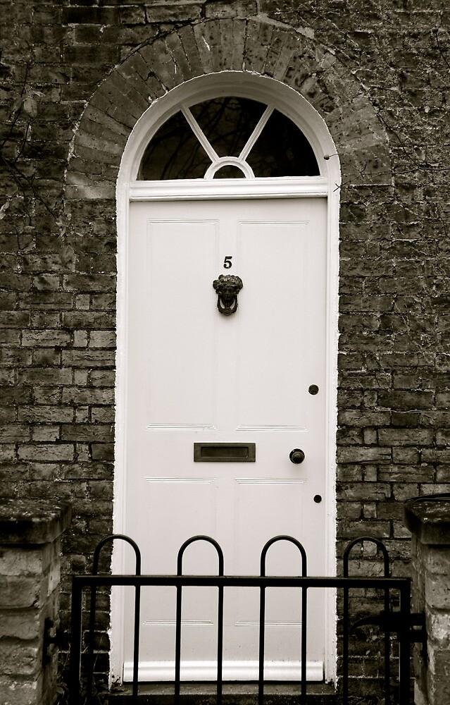 Just a Door by stelhope