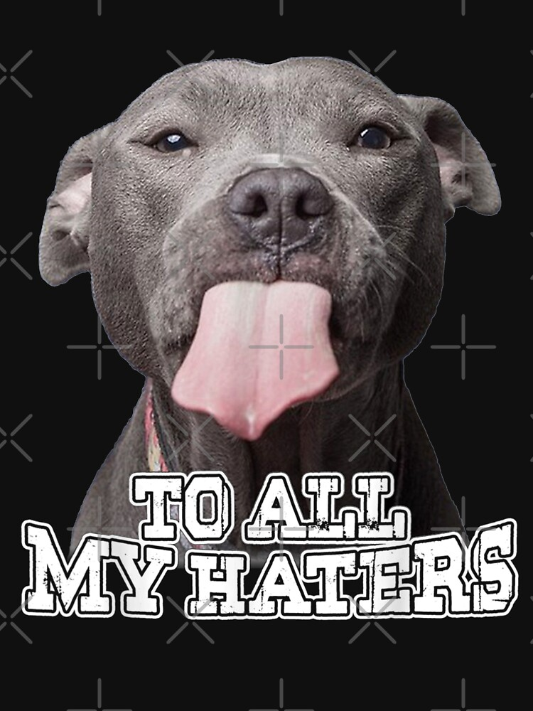 To All My Haters Pitbull Dog  by IlirianaVeseli