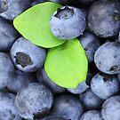 Blueberries by pjwuebker