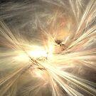 Birth of a Star by pjwuebker