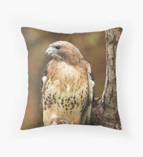Broad Winged Hawk ~ Throw Pillow