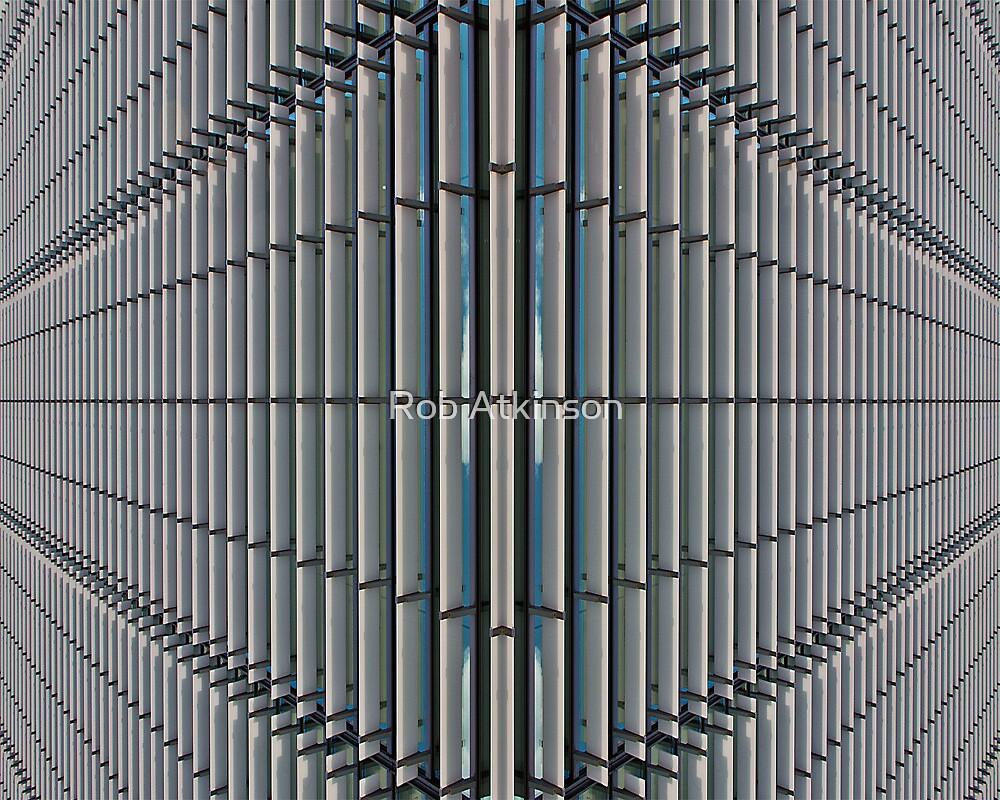 Symmetrical Divide by Rob Atkinson