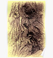 Tree Face Poster