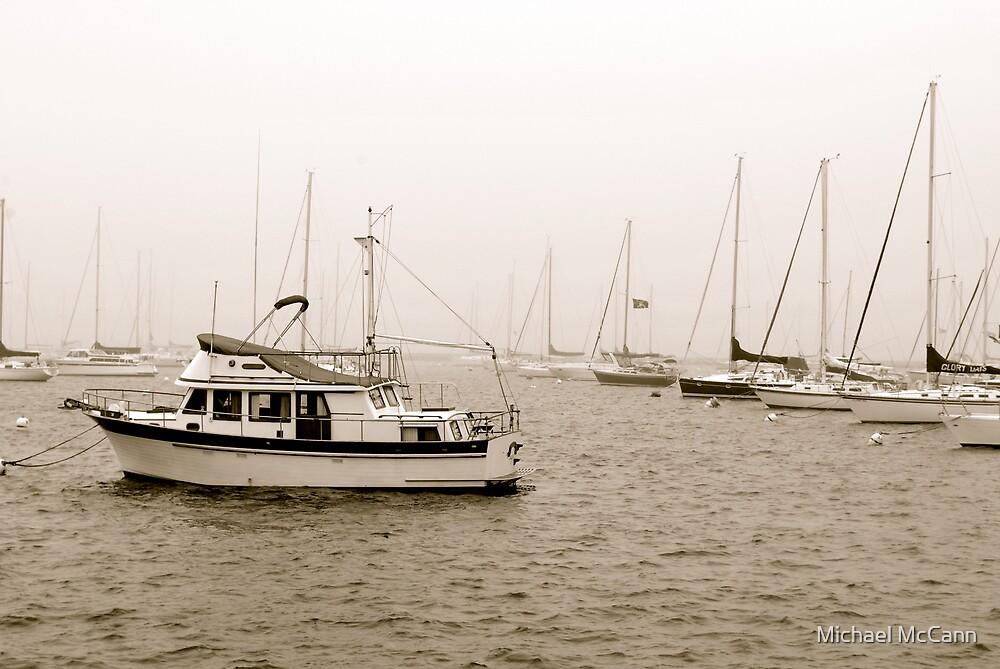 Lake Michigan Harbor  by Michael McCann