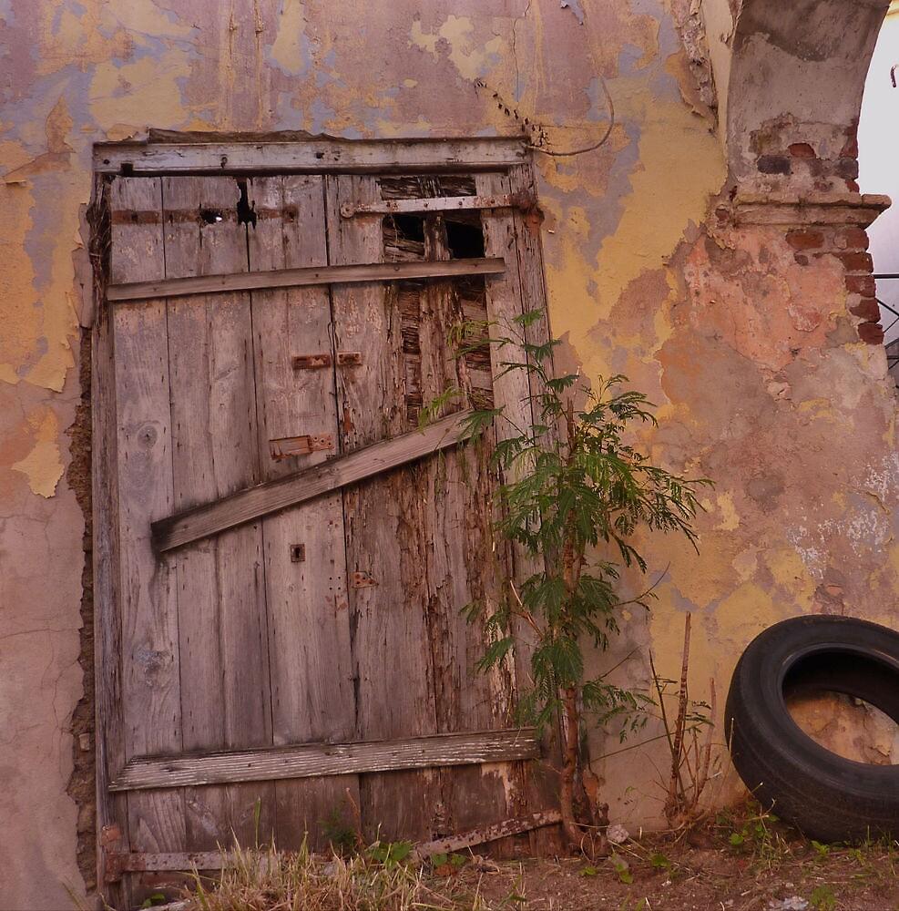 Door with a Tire by ekingrn