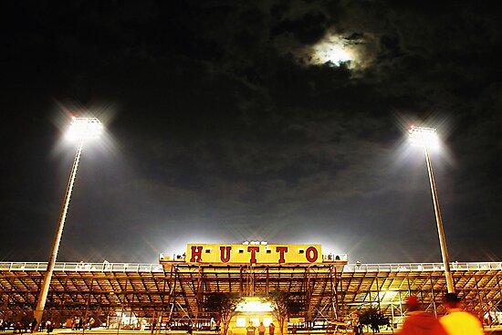 Hutto Hippo Stadium by Trish Mistric