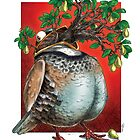 And a Pear Tree in a Partridge ♫ by Phillip Blackman