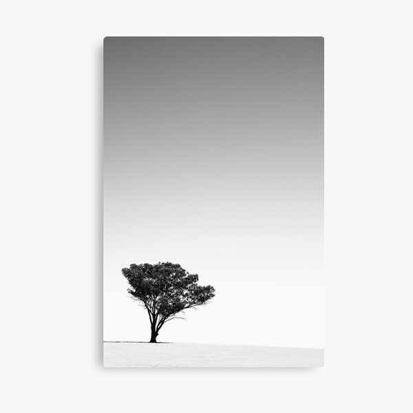 A long dry summer Canvas Print