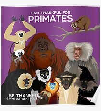 I Am Thankful For Primates Poster