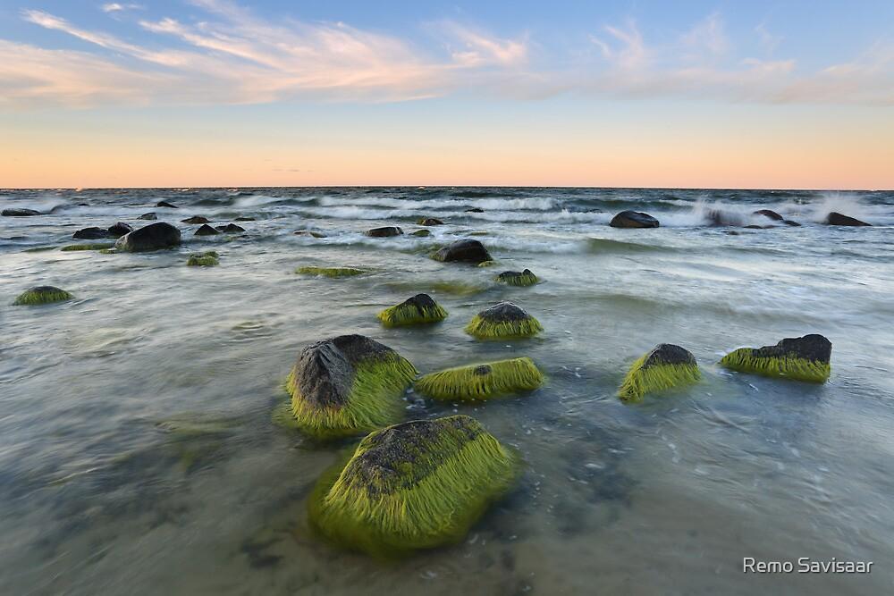 Green Rocks  by Remo Savisaar