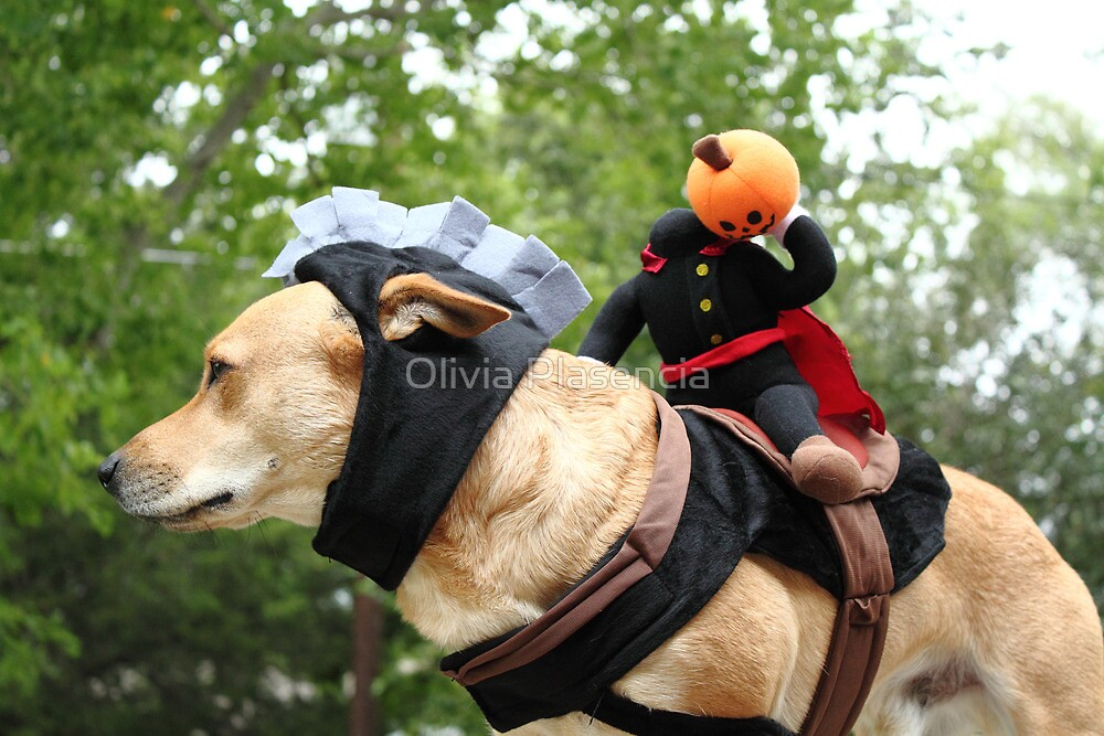 The Headless Horseman and his Steed by Olivia Plasencia